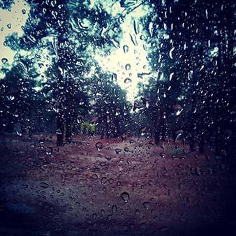 دانلود آهنگ نه حرفشم نزن محاله فکرشم شروع عشق تو با من از باران