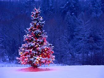 دانلود آهنگ we wish you a merry christmas