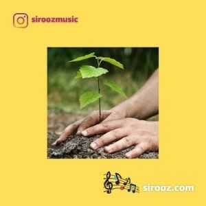 دانلود اهنگ به دست خود درختی می نشانم